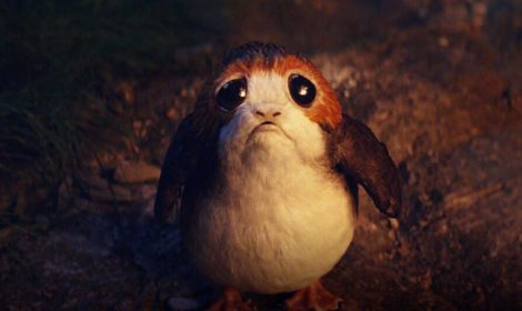 Porgs Puffins and Skellig Michael ~ Star Wars: The Last Jedi. Image syfy.com
